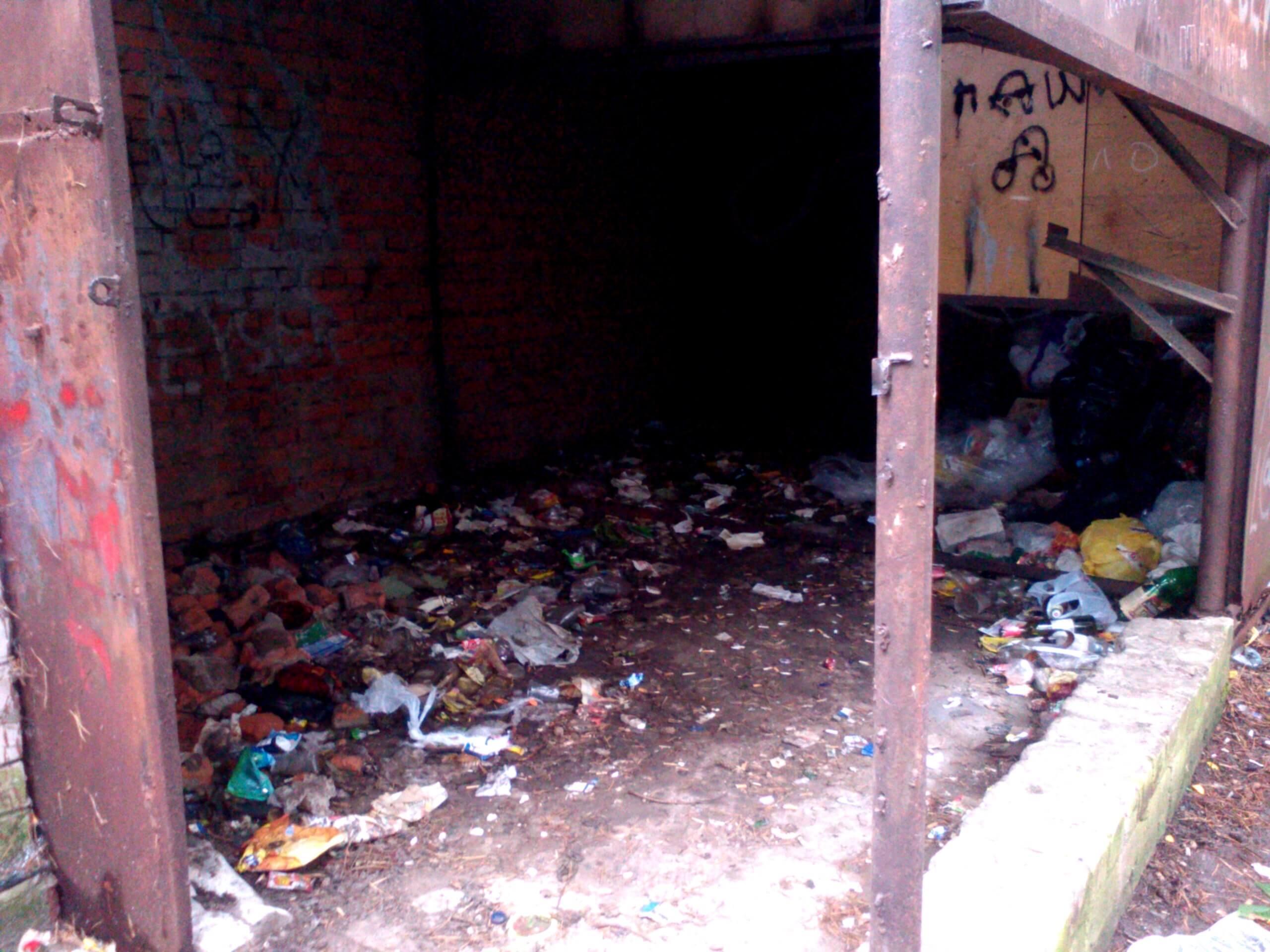 Однак у парку ще залишилося сміття, яке активістам прибрати не вдалося.